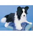 Douglas Cuddle Toys Chase Border Collie (2001)