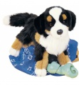 Douglas Cuddle Toys Trevor Bernese Mountain Dog (2025)